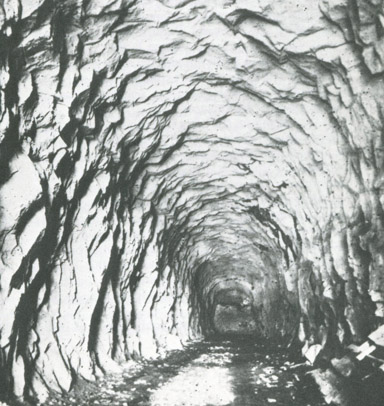 tunnel6-1m-4x4x96